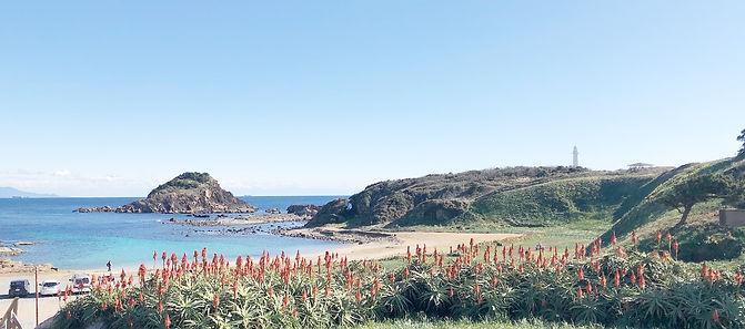爪木崎の海24.jpg