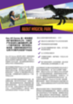 page 2 chinese small.jpg