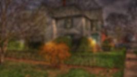 House with Yellow Bush 2048w.jpg