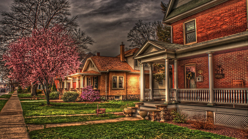 House with Purple Tree- fattal.jpg