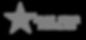 BlueStarFamilies-Logo  grayscale.png