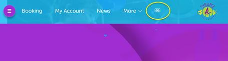 Screenshot_2020-11-13 Splash Customer Po
