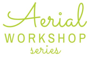 Aerial Workshop Series.png