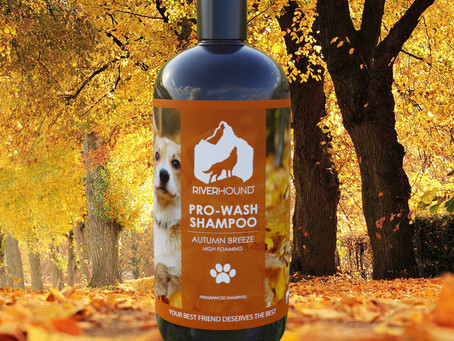 NEW PRO-WASH AUTUMN BREEZE SHAMPOO
