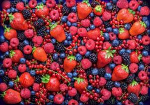 Berry-Back_edited.jpg