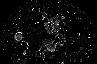 SOMEXPAL logo.png