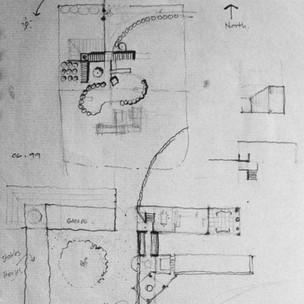 Torreya Initial Sketch