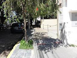 levantamento arborização em Campinas -SP