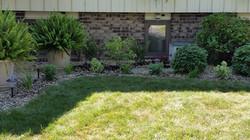Sun plants installed