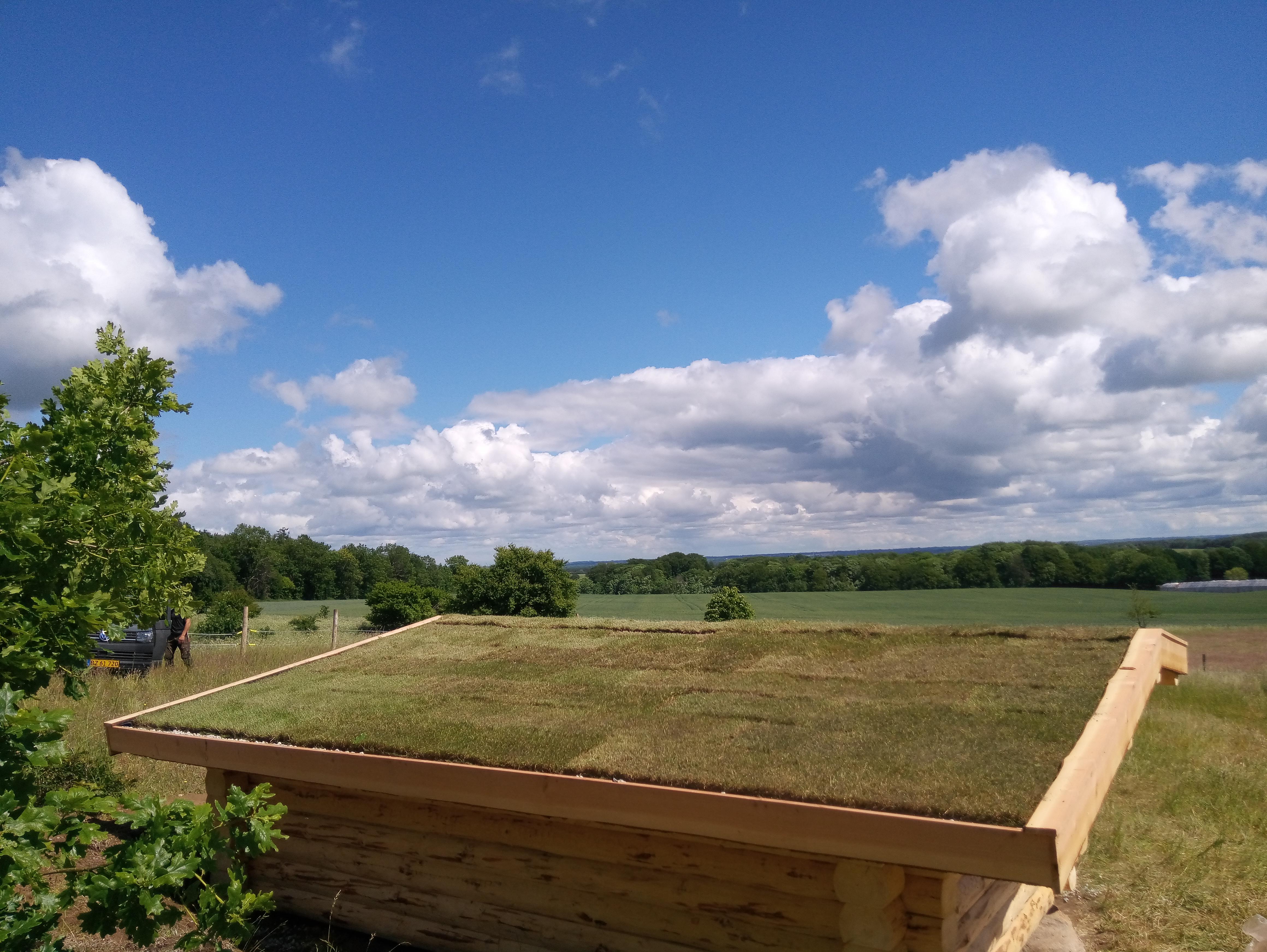 Fuldtømmershelter med græstørv på taget