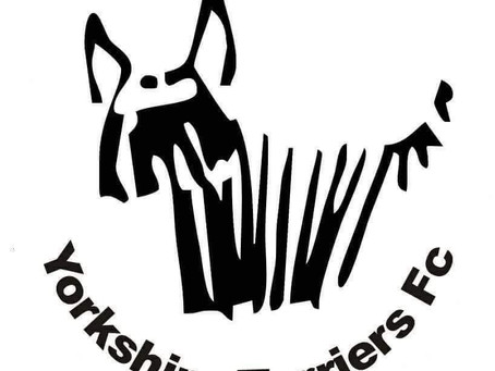 Danny Silk PT meets The Yorkshire Terriers