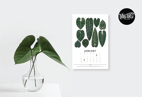 2021 Houseplants Mini Calendar