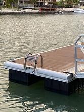 Dock Ladder up.jpg