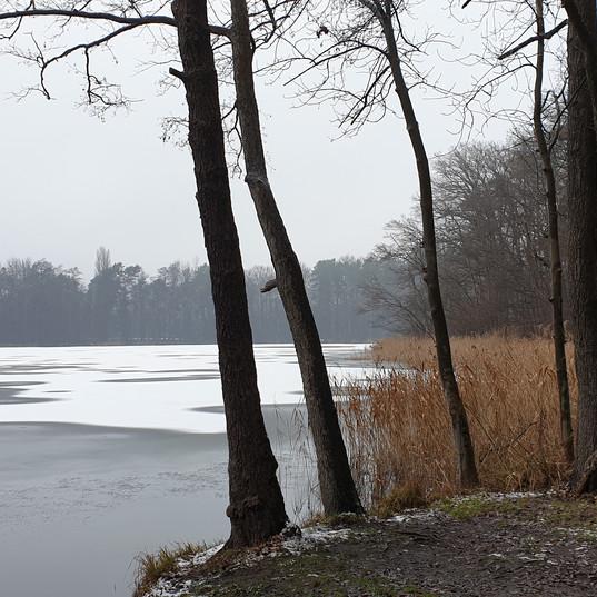 Winter am Weißen See