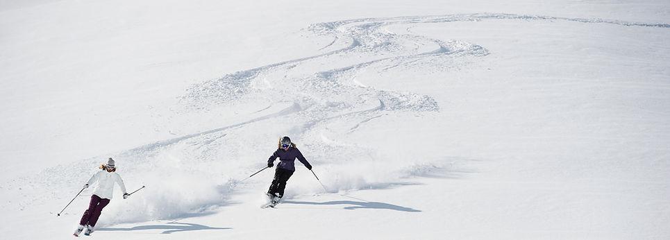 Magasin de sports d'hiver, magasin de ski, magasin de télémark, boutique de vélo 4 saisons, magasin de ski hors-piste, magasin de ski touring, ski backcountry, magasin de planche à neige, magasin de raquettes à neige, magasin de ski de fond