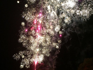 Fireworks at the Park!
