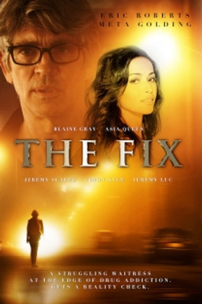 DVD - The Fix