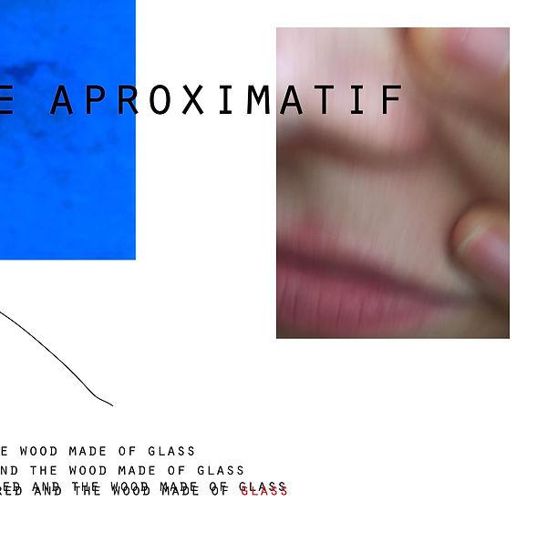 lhomme aproximatif2.jpg