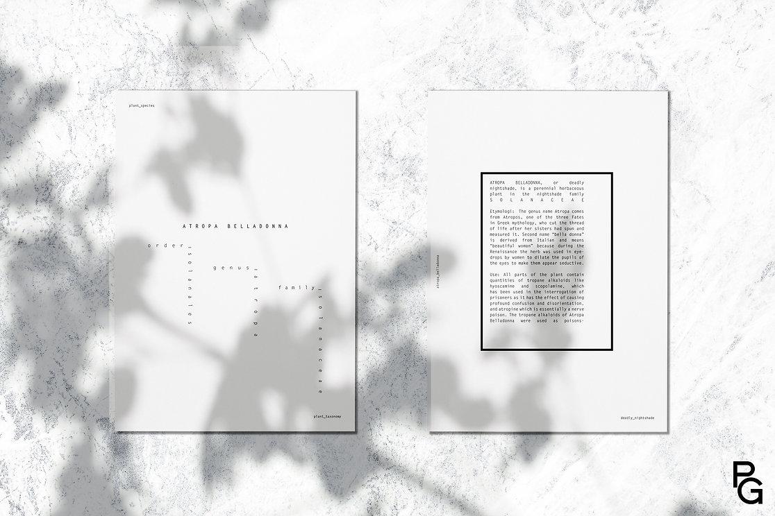 sheet1.1.jpg