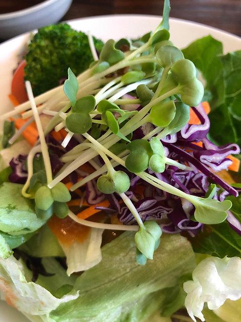 Summer Salad Mix