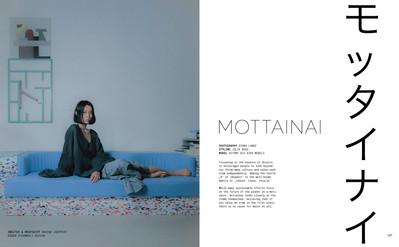 Terrible Magazine issue 02, Mottanai