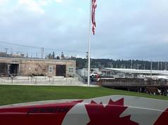 Prestol Custom Canada Maple