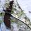 Thumbnail: ПЧАК цельнометаллический из кованой стали.95х18