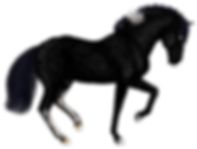 reaperdressage2.png