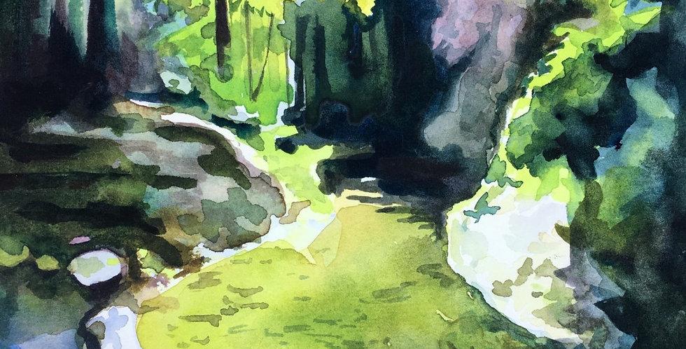 """Nisene Marks River"" by Victoria Galitzine"