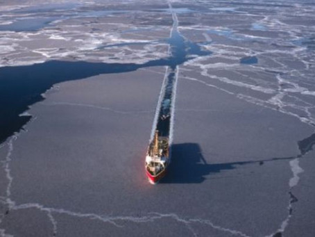 Major shipping companies will not use the Arctic sea route