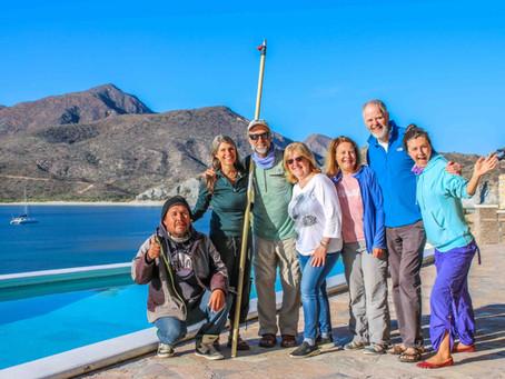 Whales, Sheep, Rabbits, Towering Cacti And Gorgonians – Baja Week 6