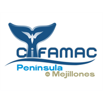 cifamac.png