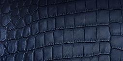 Cuirs bleu marine4.jpg