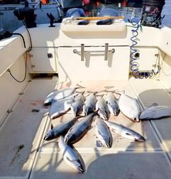 Coho and Halibut Fishing Prince Rupert