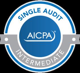 single-audit-sample-badge.png