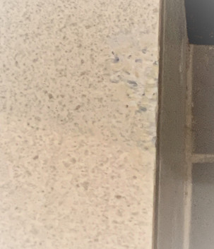 Tile Repair (after)