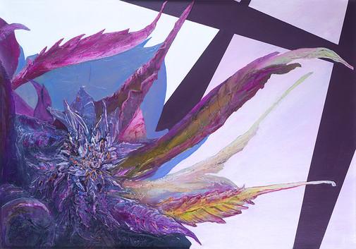 Cannabis sativa, sweet tart