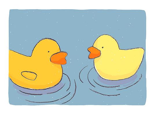 8.canard-flotte.jpg
