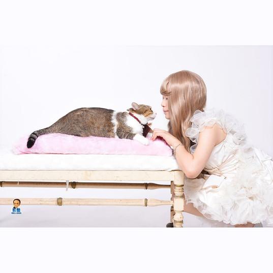 影藝攝影-寵物攝影-毛毛.jpg