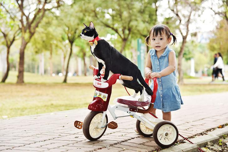 影藝攝影-兒童戶外攝影-貓咪與兒童.jpg