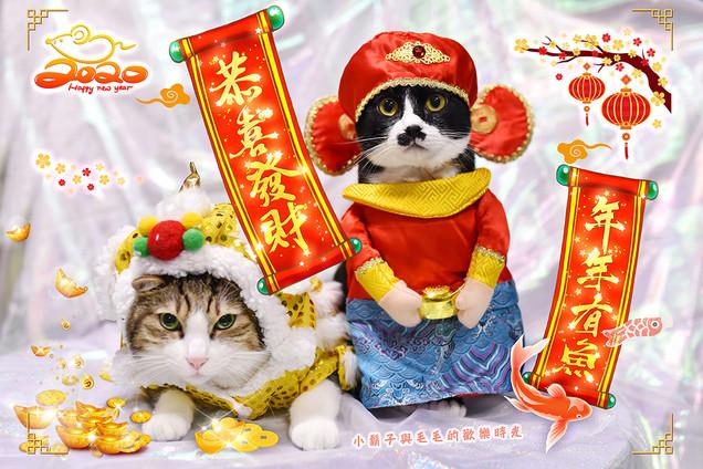 影藝攝影-寵物攝影-中國節慶.jpg