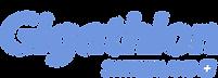Logo_Gigathlon_SUI_cmyk_pos Kopie.png