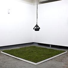 Grass_square.jpg