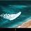 """Thumbnail: WAVE TV - Frameless 58"""""""