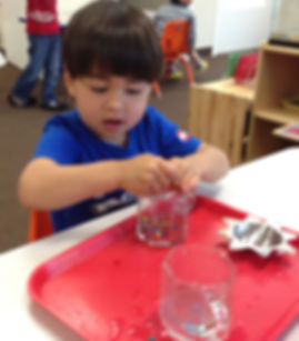 Montessori, Japanese, Bellevue, Bilingual School