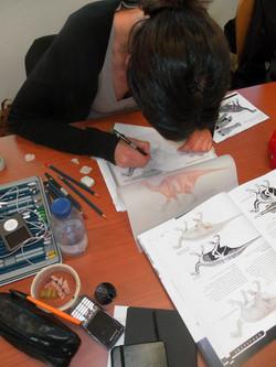 Ilust. Paleontológica - estudos