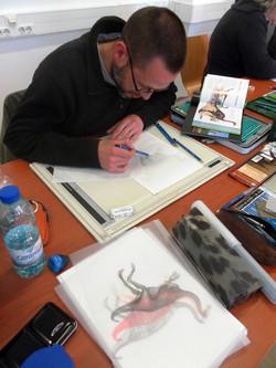 Ilust. Paleontológica - mais estudos