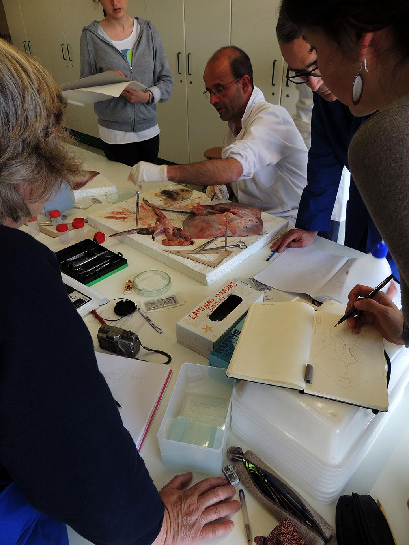 seminários - medições & disseção 3