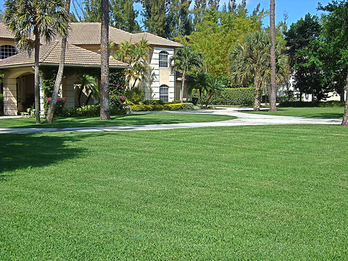1 Turf care treatment: $39 (Up to 5000 sq/ft) (35% Off - Original Price $60)