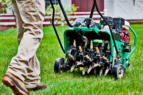 Lawn Aeration : $99 (33% Off - Normal Price $149)